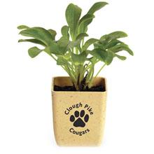 Flower Pot Set Garden Kit & Planter