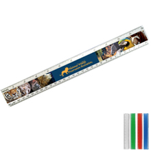 "Beveled Plastic Ruler, 12"" Full Color"
