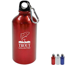 Budget Meeter Aluminum Sports Bottle, 17 oz.