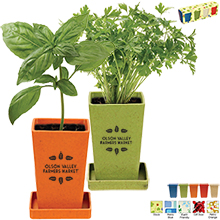Herb Garden Set, 4-Pack