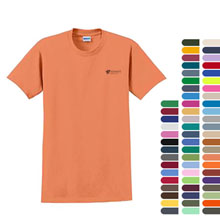 Gildan® 100% UltraCotton™ Short Sleeve Tee Shirt, Colors