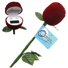 Freshwater Pearl Earrings in Rose Gift Box