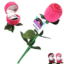 Cubic Zirconia Earrings in Rose Gift Box