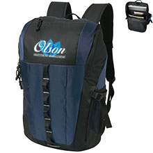 Dash ColorBurst Compu-Backpack