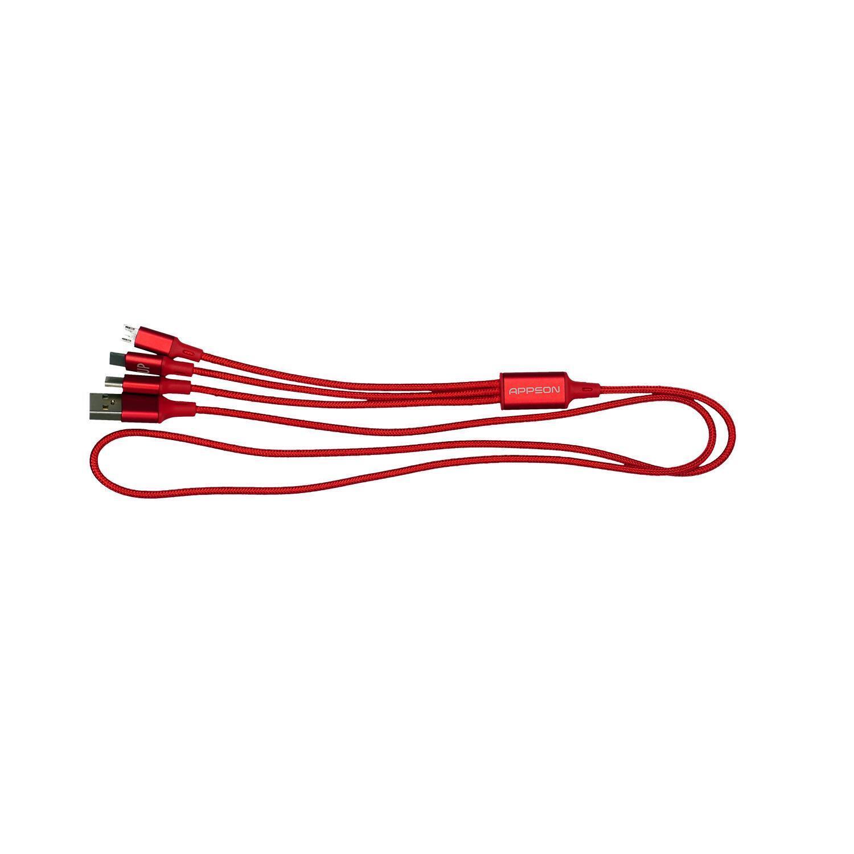 Metallic 3' Type C USB Charging Set