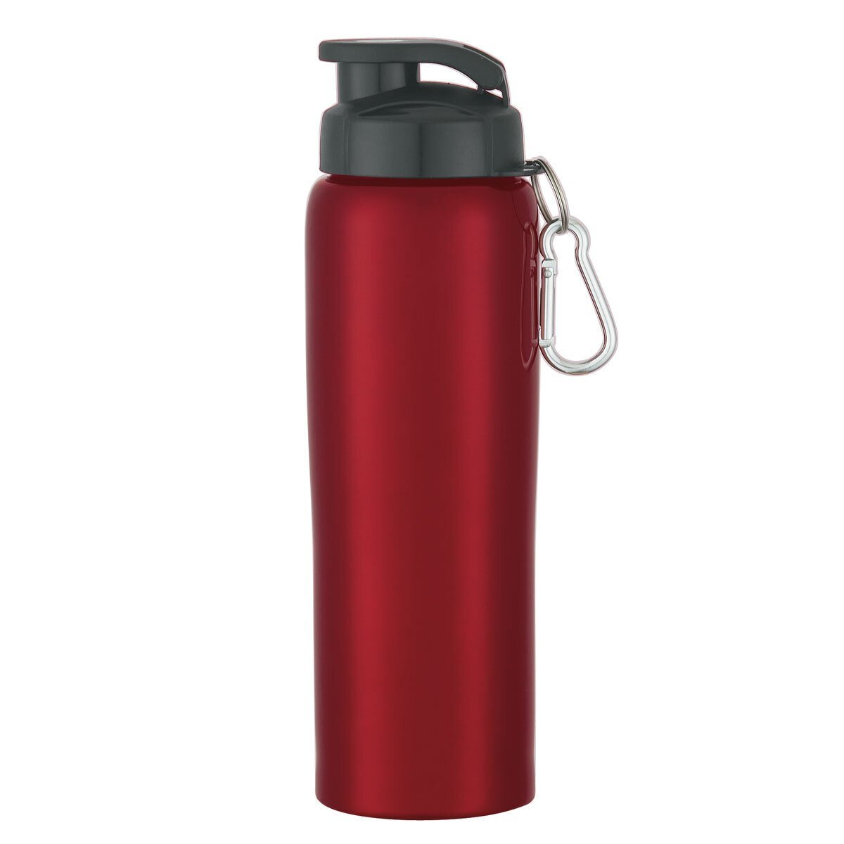 Stainless Steel Bike Bottle, 24oz