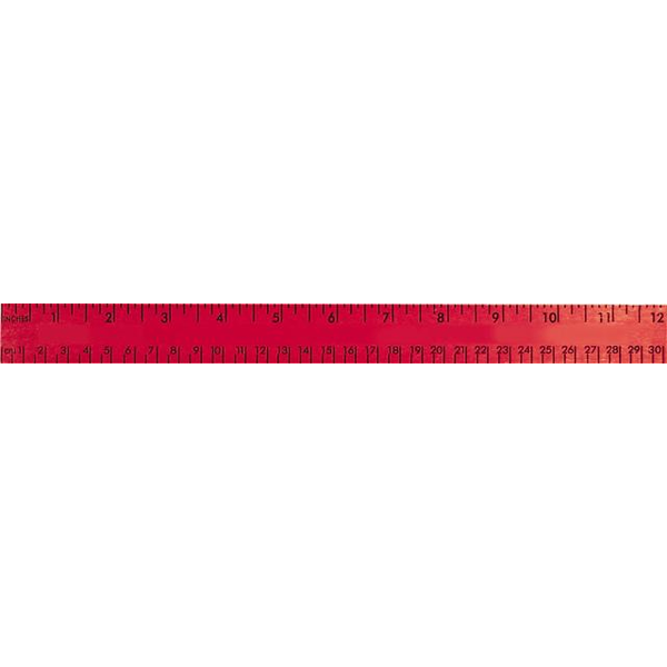 Enamel Wood Ruler with Both Scales, 12""