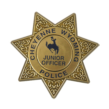 Junior 7 Point Sheriff Star Badge with Pocket Clip, Custom