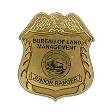 Junior Eagle Design Badge with Pocket Clip, Custom