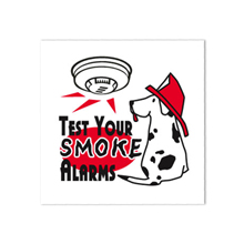 Test Your Smoke Alarms Temporary Tattoo, Stock