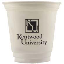 Economy Plastic Cup, 12oz.
