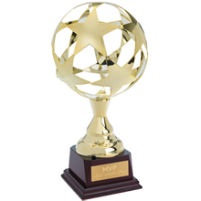 "All Star Iron Award Trophy, 14"""