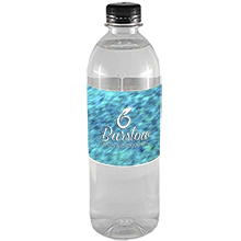 Bullet Bottled Spring Water w/ Full Color Imprint, 16.9oz.