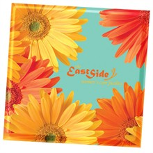 Daisy Design, Full Color Ceramic Coaster