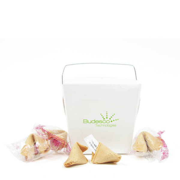 Take Out Fortune Cookie Container, 4 Cookies