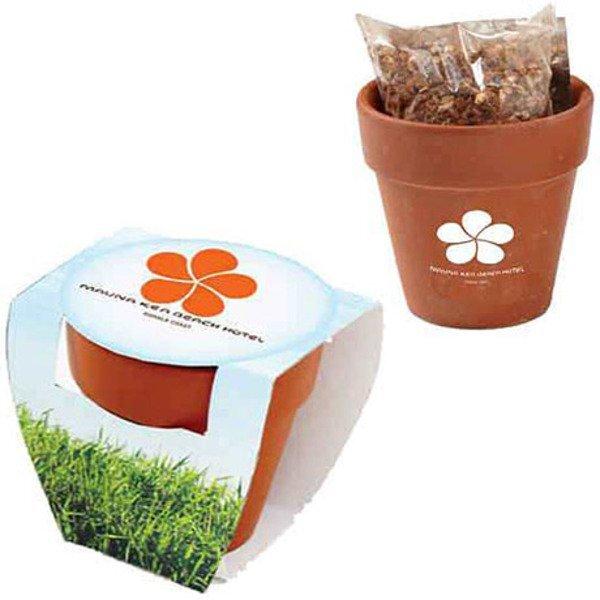 Terracotta Pot w/ Seeds