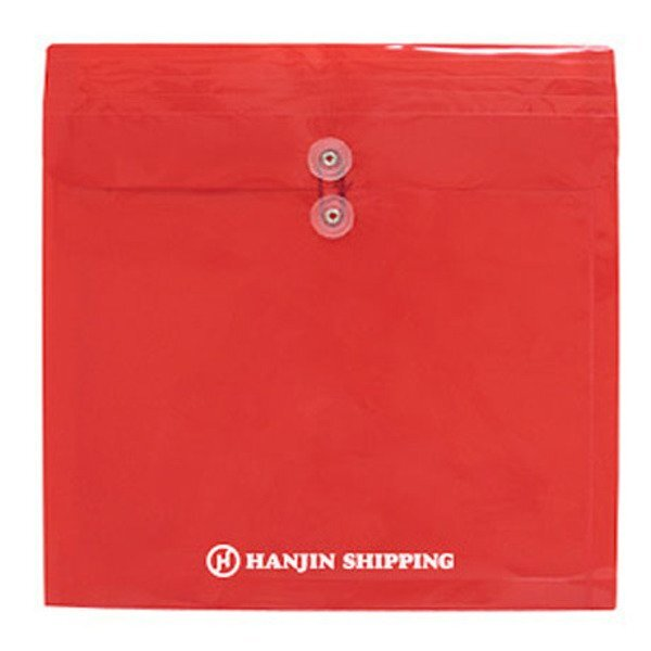 "Large Poly Envelope with String Closure, 13"" x 13"""