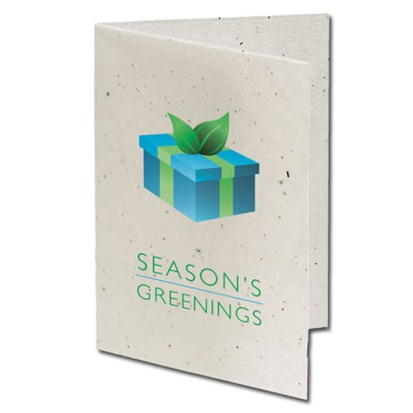 Season's Greenings Present Seeded Paper Holiday Card