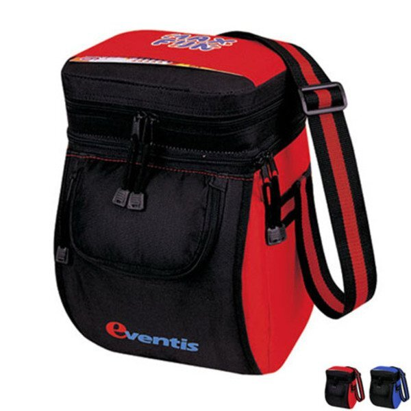 Picnic Insulated 12 Pack Cooler