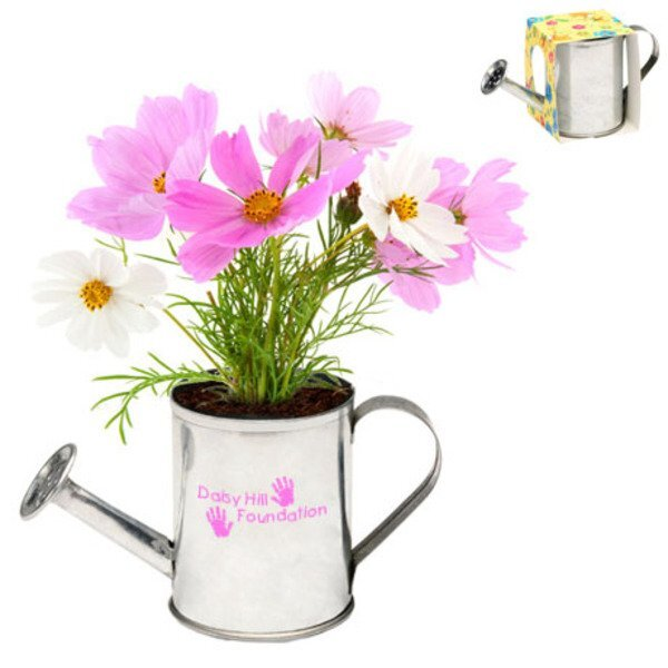 Watering Can Flower Planter Kit