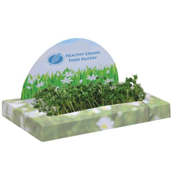 Circle SproutScape Desktop Garden