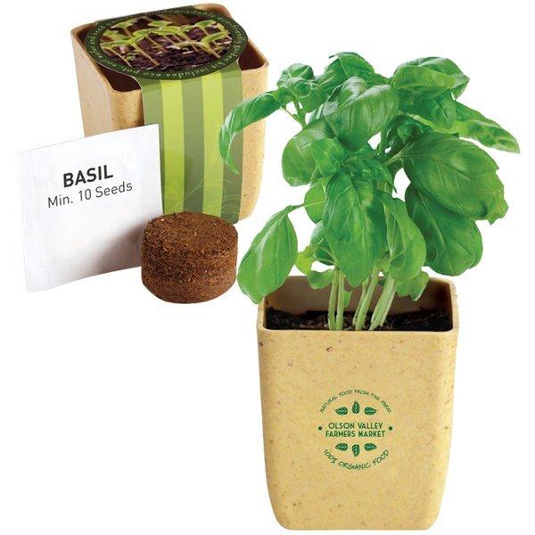Flower Pot Set w/ Basil Seeds