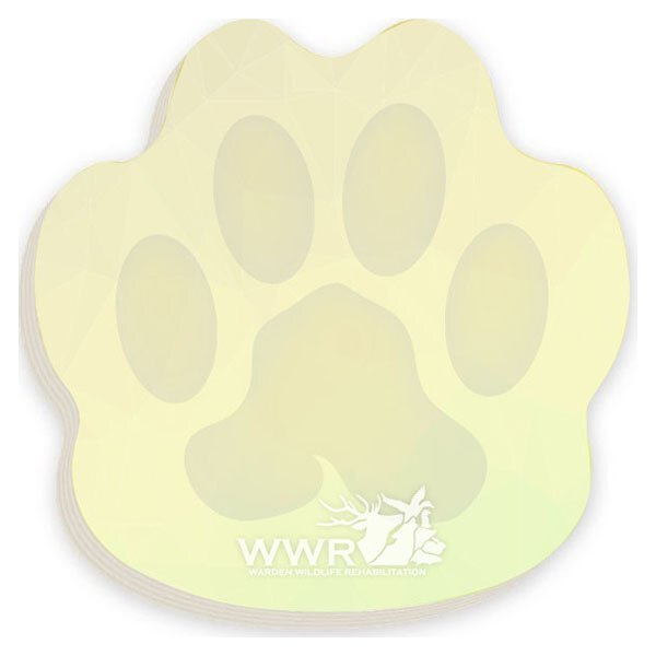 "BIC® Paw Shape Adhesive Notepad, 3"" x 3"", 25 Sheets"