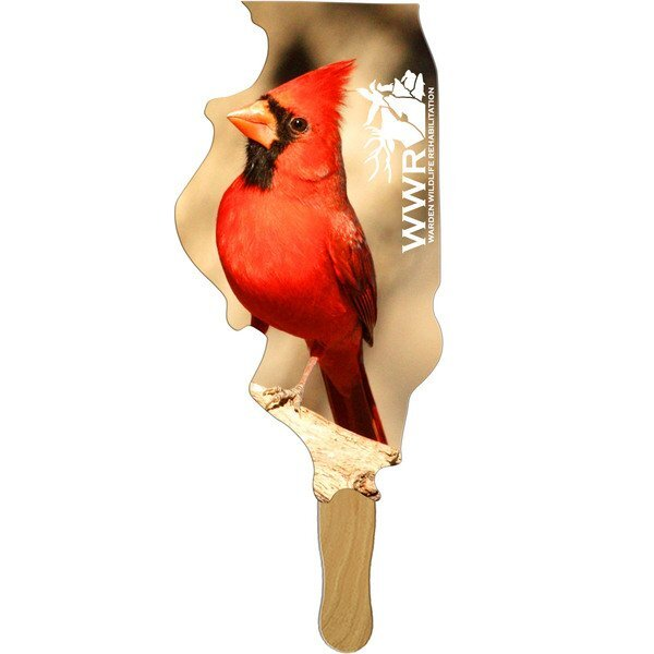 Illinois State Hand Fan, Full Color