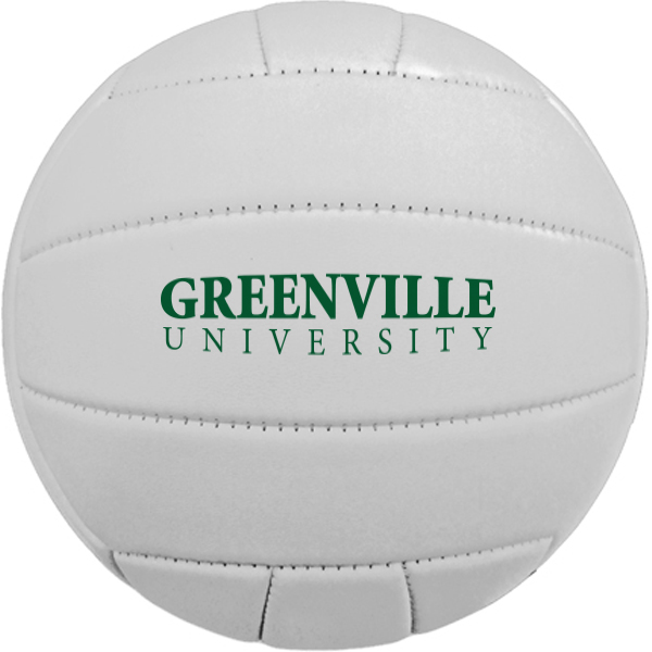 Full Size Synthetic Leather Volleyball, 26""